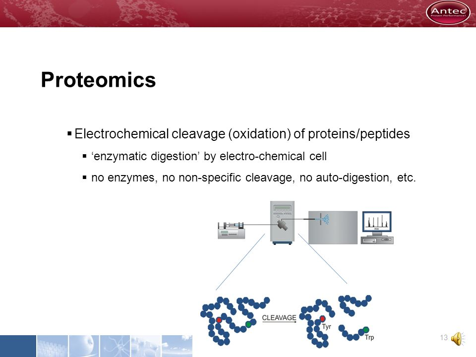Proteomics Electrochemical cleavage (oxidation) of proteins/peptides