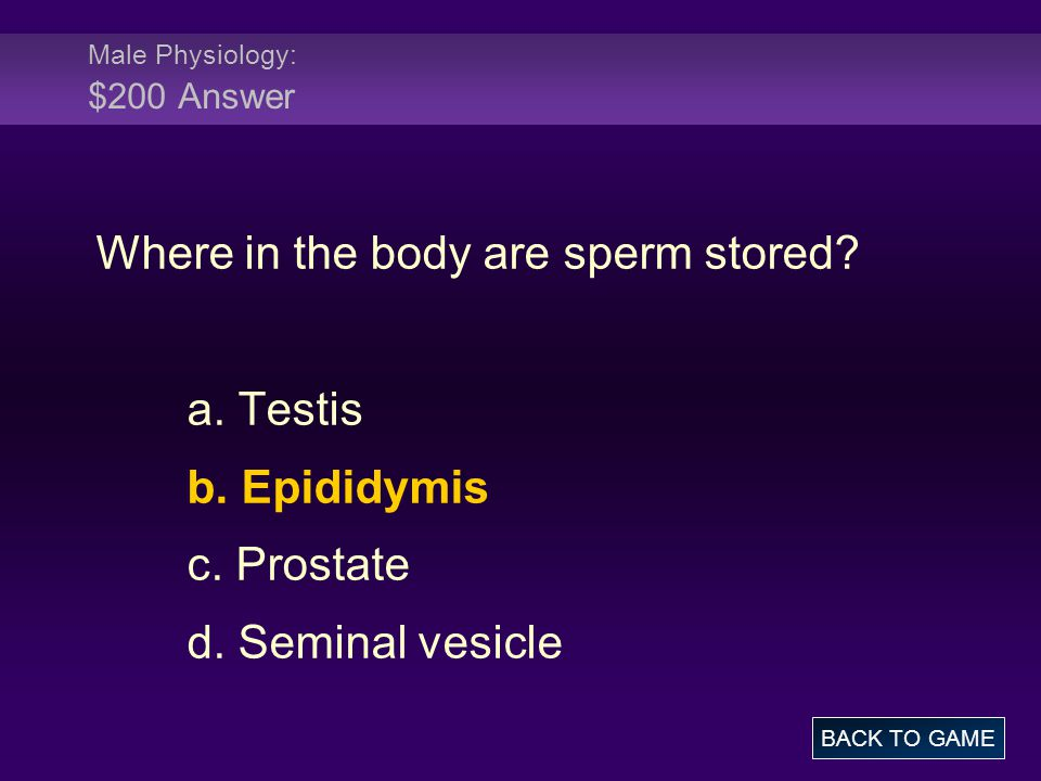 Male Physiology: $200 Answer
