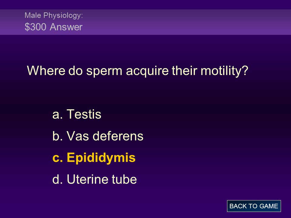 Male Physiology: $300 Answer