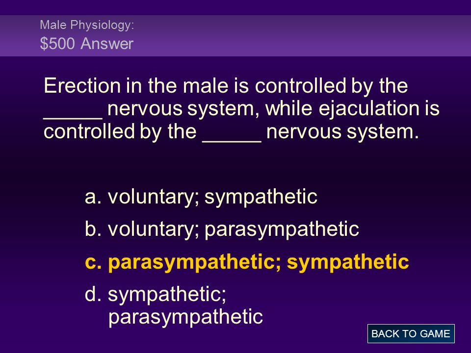 Male Physiology: $500 Answer
