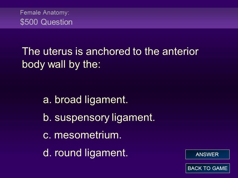 Female Anatomy: $500 Question