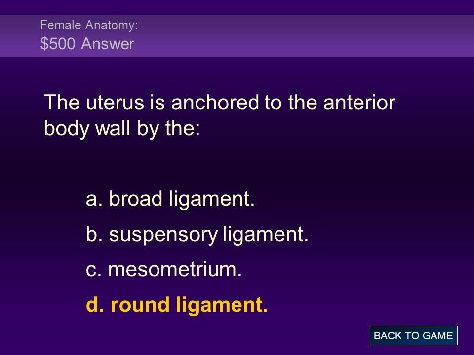 Female Anatomy: $500 Answer