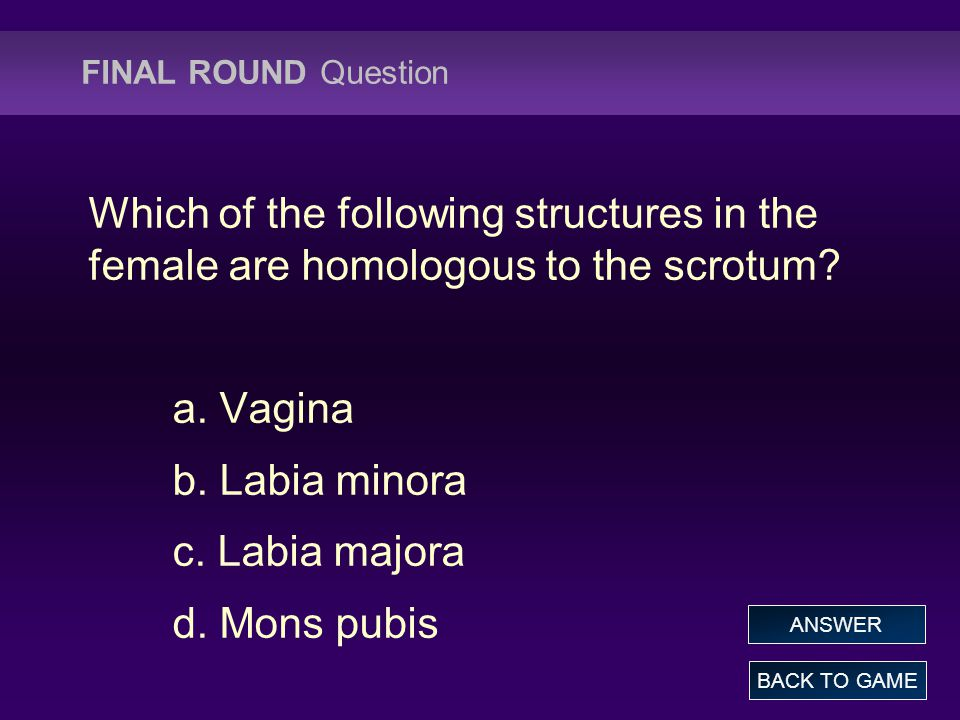 FINAL ROUND Question Which of the following structures in the female are homologous to the scrotum