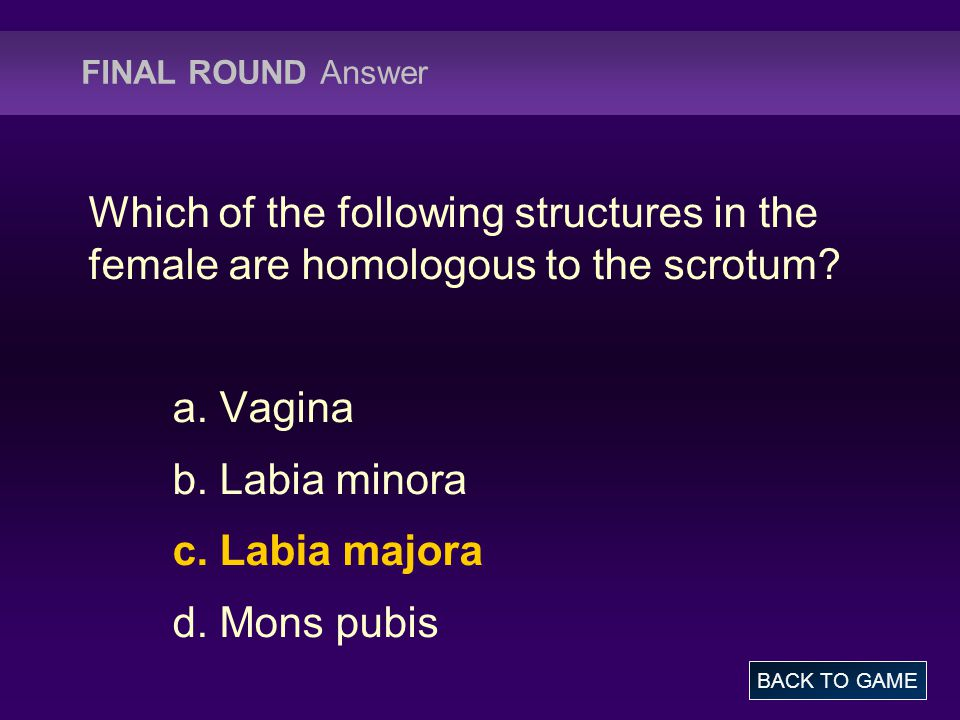 FINAL ROUND Answer Which of the following structures in the female are homologous to the scrotum a. Vagina.