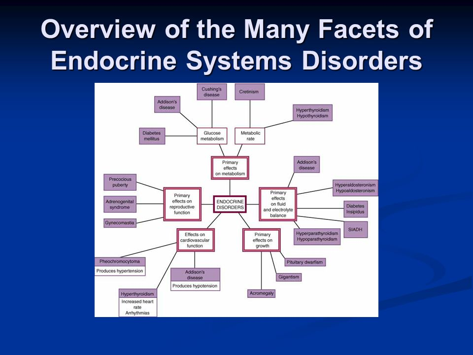 Overview of the Many Facets of Endocrine Systems Disorders