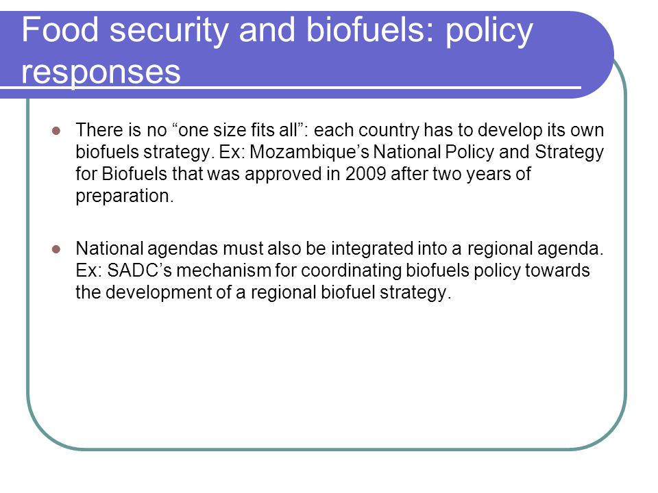 Food security and biofuels: policy responses