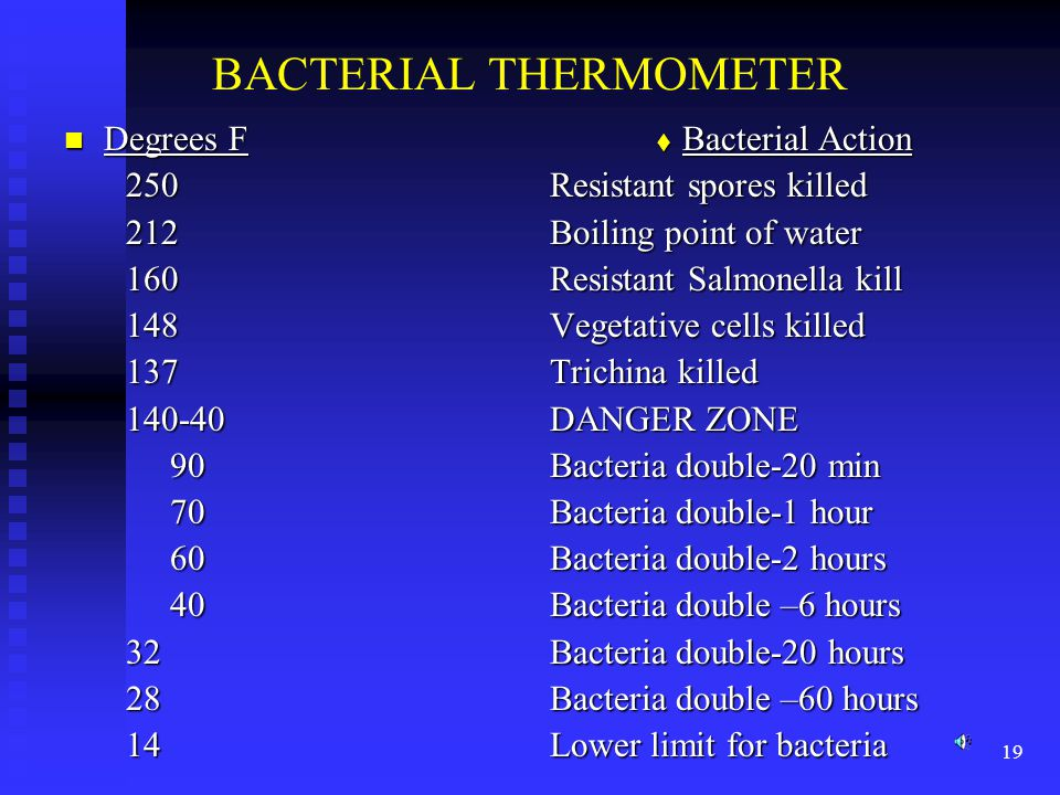 BACTERIAL THERMOMETER