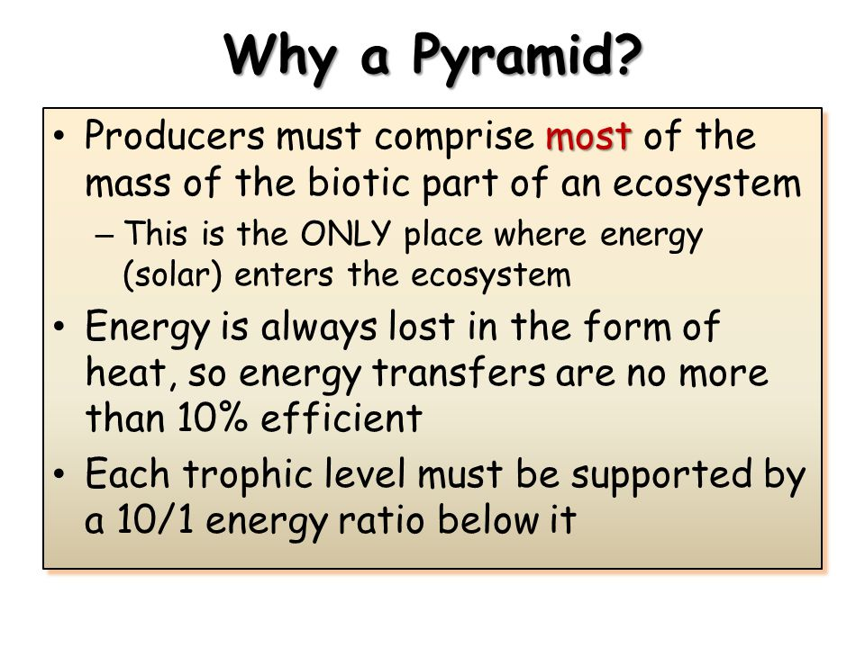 Why a Pyramid Producers must comprise most of the mass of the biotic part of an ecosystem.