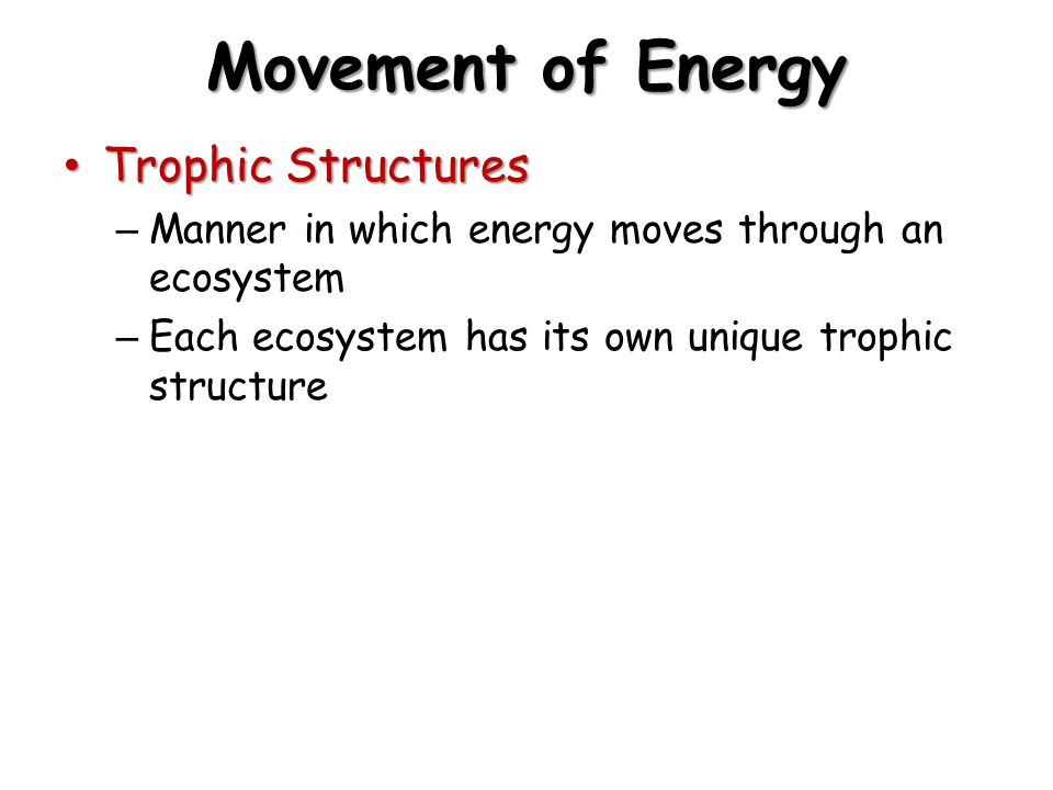 Movement of Energy Trophic Structures