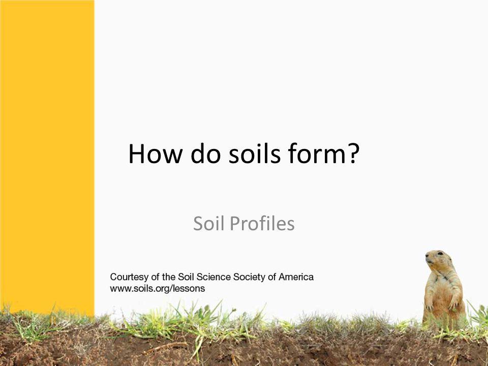 How do soils form Soil Profiles