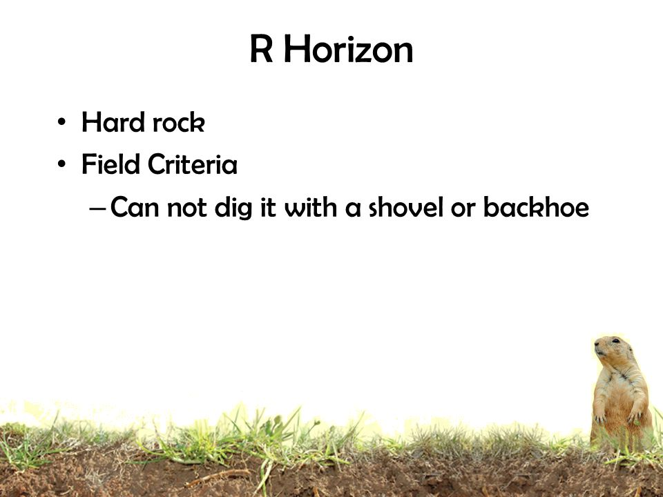 R Horizon Hard rock Field Criteria