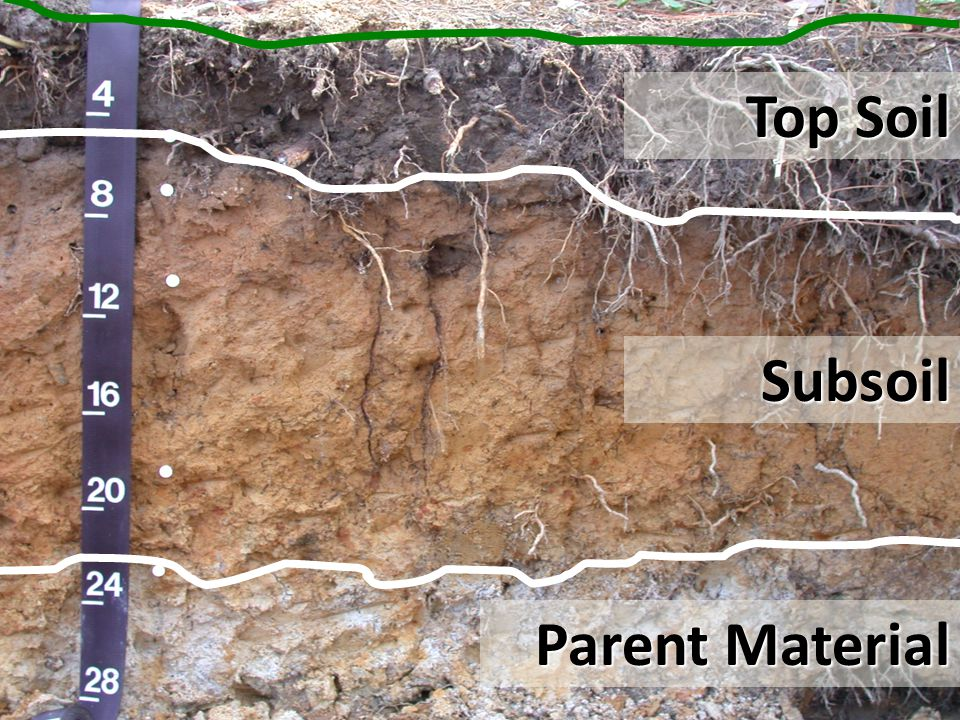 Top Soil Subsoil Parent Material