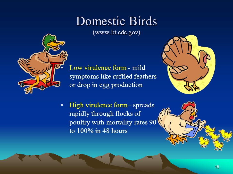 Domestic Birds (www.bt.cdc.gov)
