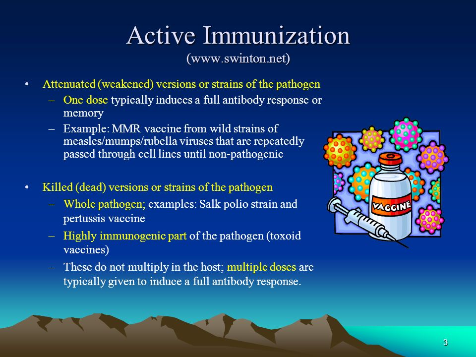 Active Immunization (www.swinton.net)