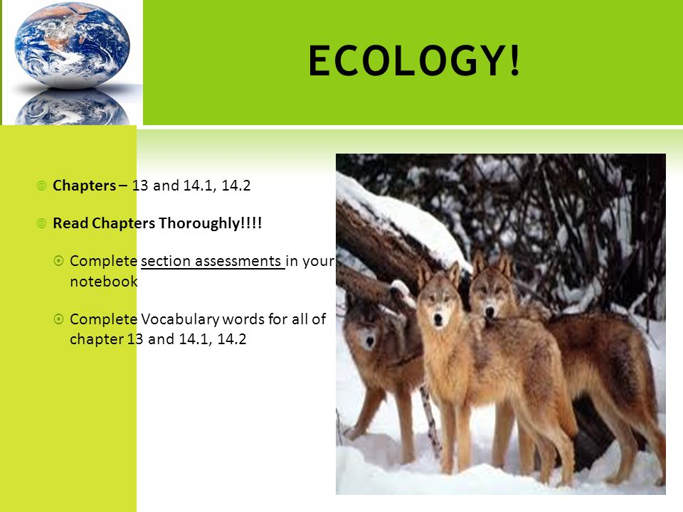 ECOLOGY! Chapters – 13 and 14.1, 14.2 Read Chapters Thoroughly!!!!