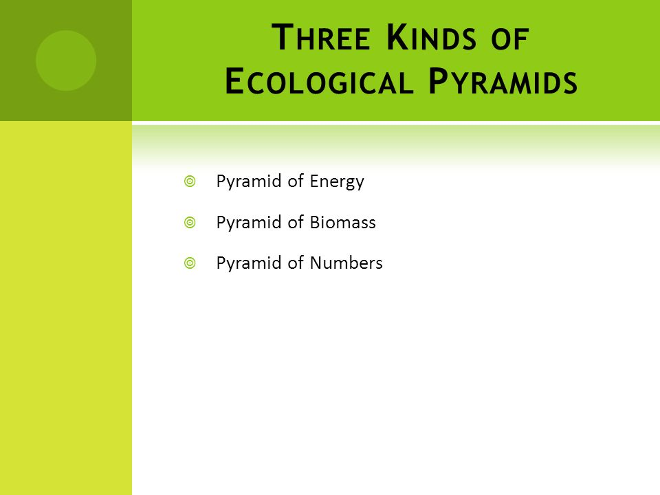 Three Kinds of Ecological Pyramids