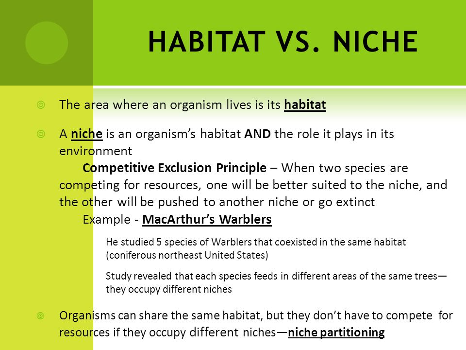 HABITAT VS. NICHE The area where an organism lives is its habitat