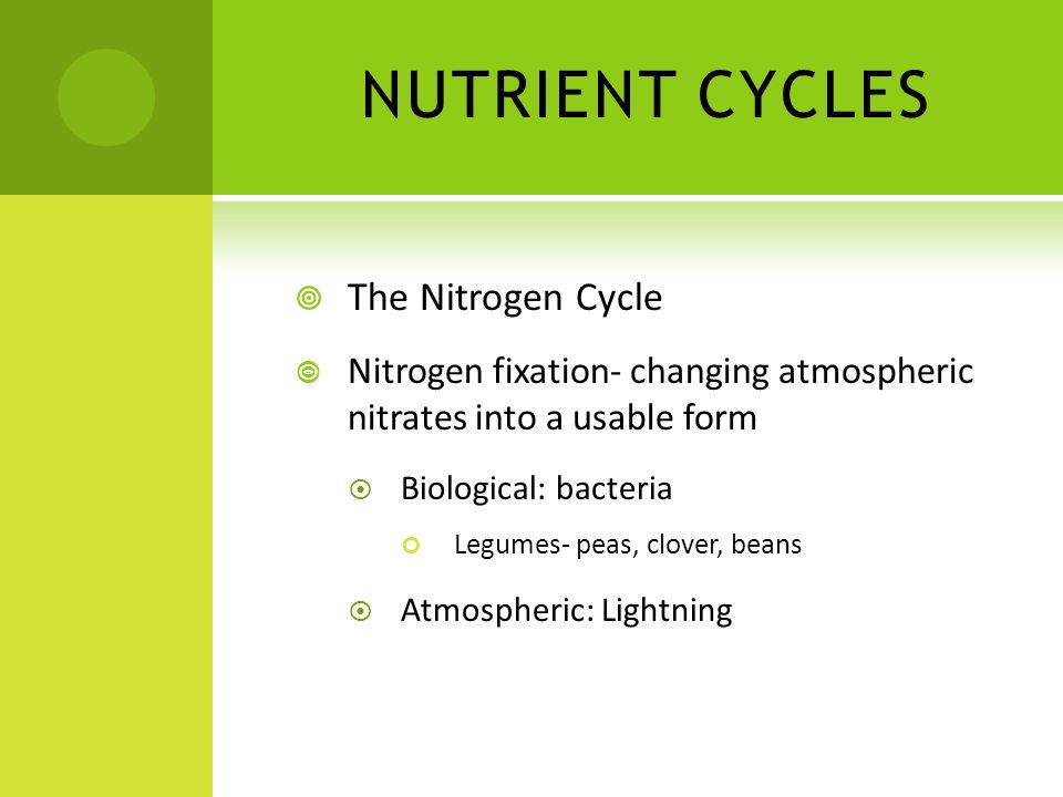 NUTRIENT CYCLES The Nitrogen Cycle