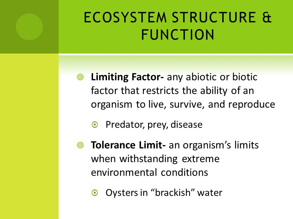 ECOSYSTEM STRUCTURE & FUNCTION
