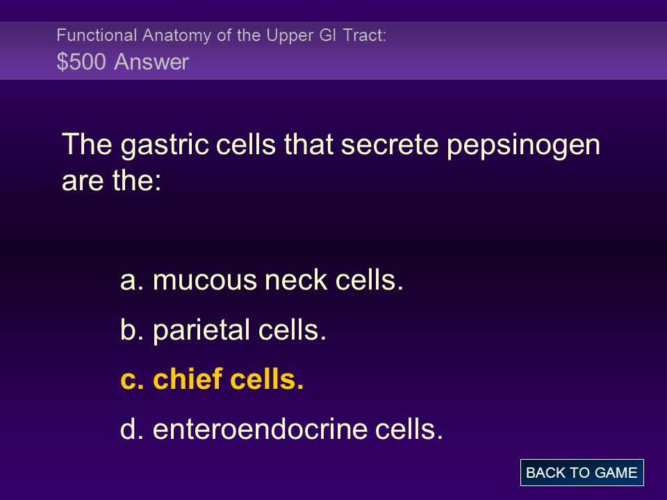 Functional Anatomy of the Upper GI Tract: $500 Answer