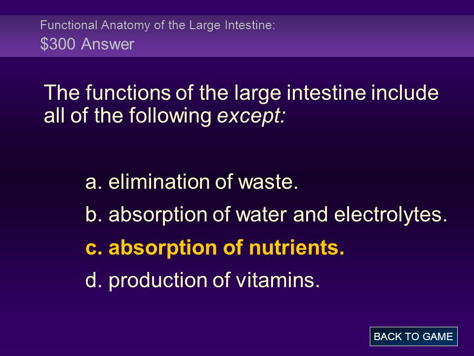 Functional Anatomy of the Large Intestine: $300 Answer