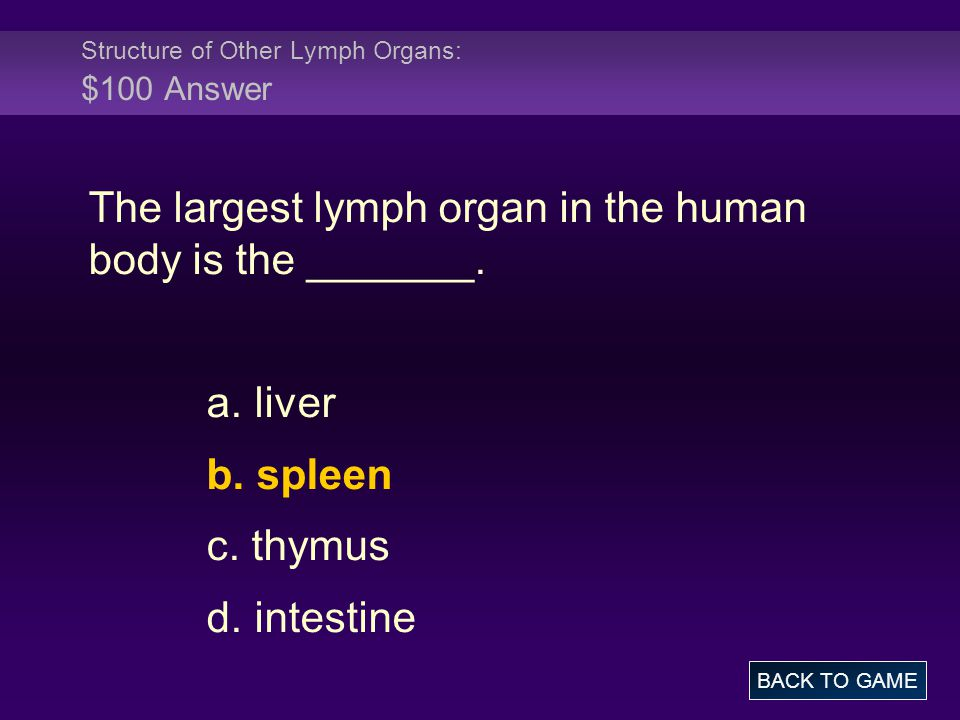 Structure of Other Lymph Organs: $100 Answer