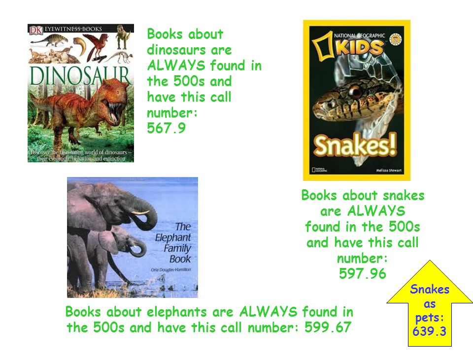 Books about dinosaurs are ALWAYS found in the 500s and have this call number: