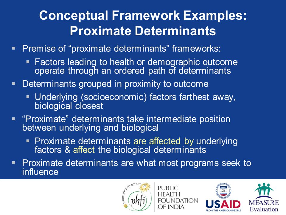 Conceptual Framework Examples: Proximate Determinants
