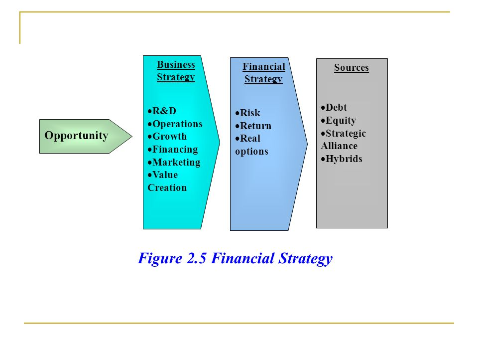 Figure 2.5 Financial Strategy