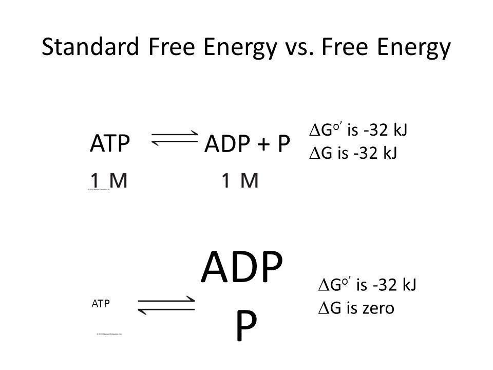 Standard Free Energy vs. Free Energy