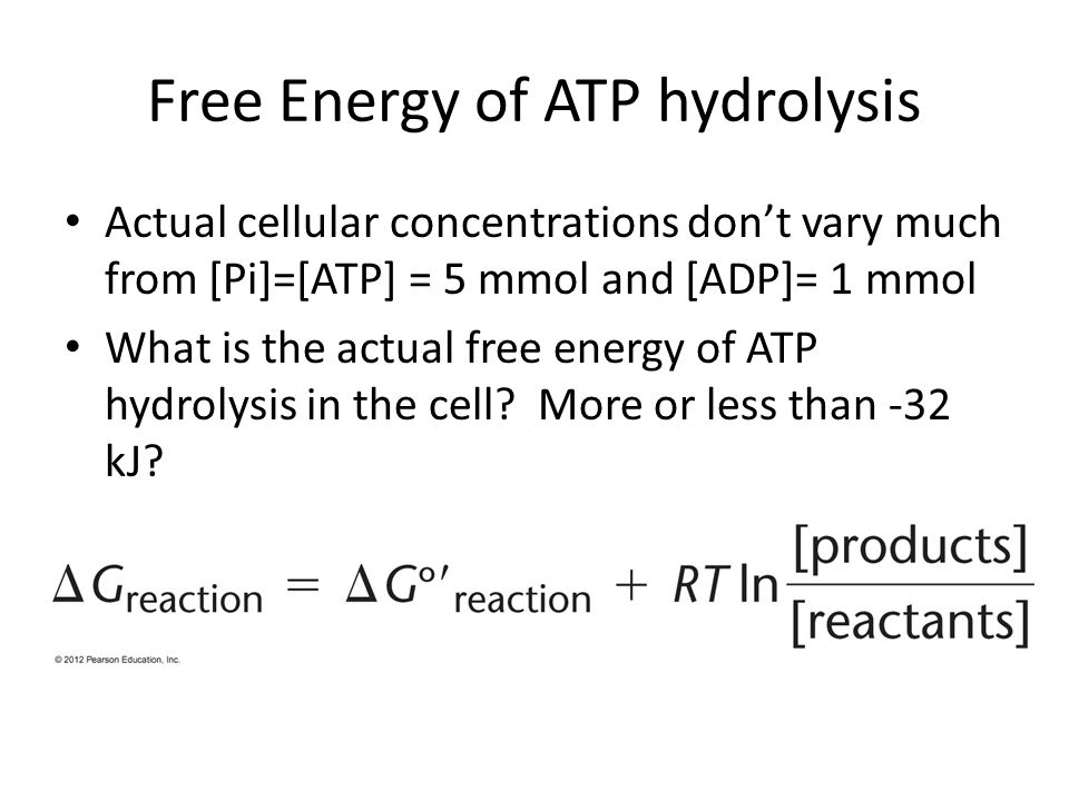 Free Energy of ATP hydrolysis