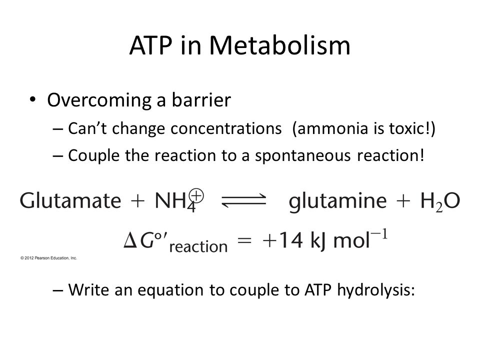 ATP in Metabolism Overcoming a barrier