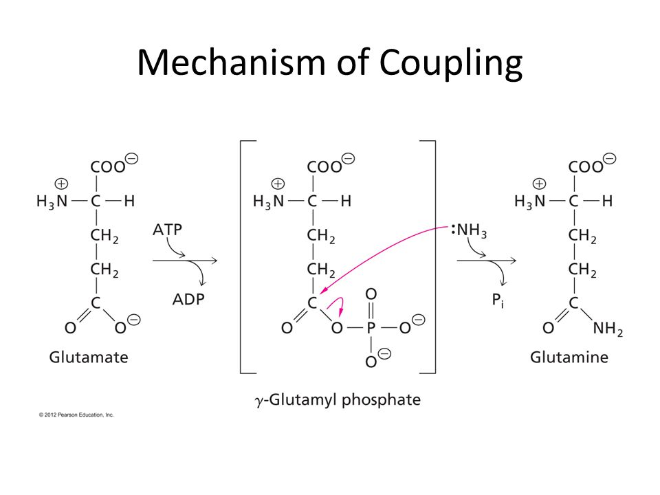 Mechanism of Coupling