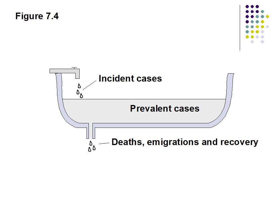 Figure 7.4 Incident cases Prevalent cases Deaths, emigrations and recovery