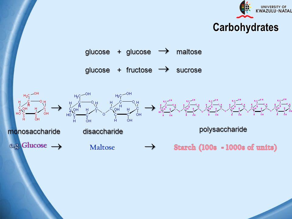 Carbohydrates       glucose + glucose maltose glucose + fructose