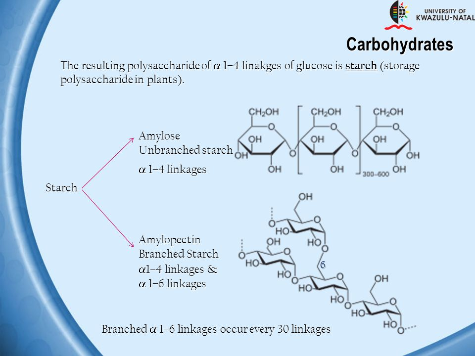 Carbohydrates The resulting polysaccharide of  1–4 linakges of glucose is starch (storage. polysaccharide in plants).