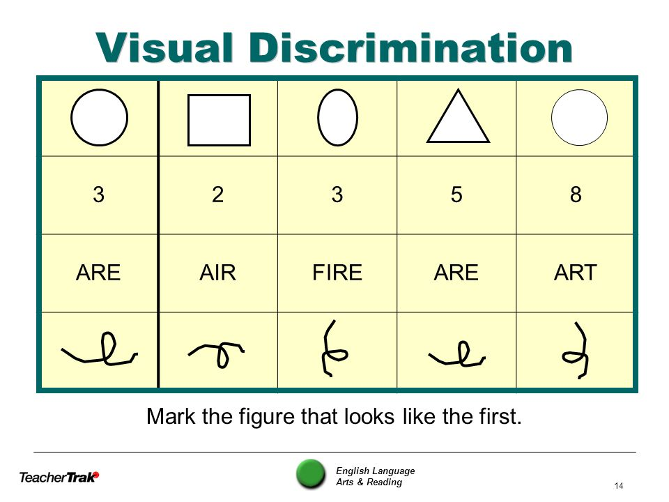 Visual Discrimination