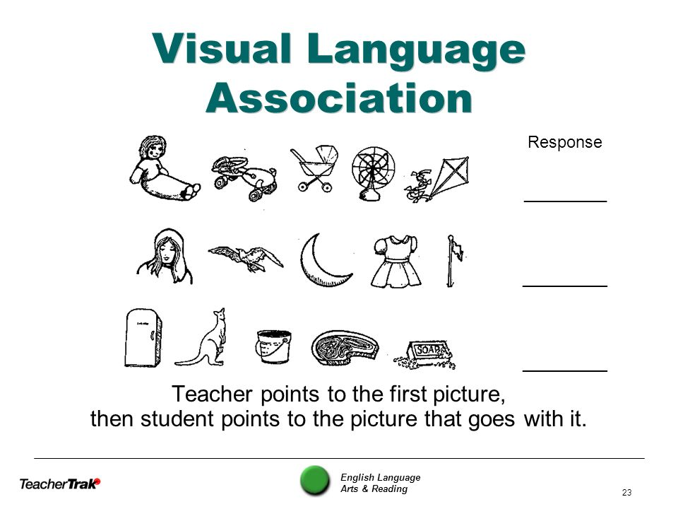 Visual Language Association