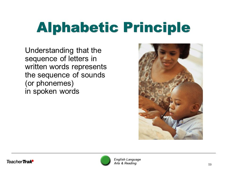 Alphabetic Principle Understanding that the sequence of letters in written words represents the sequence of sounds (or phonemes) in spoken words.
