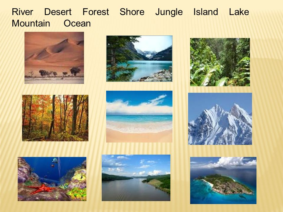 River Desert Forest Shore Jungle Island Lake Mountain Ocean