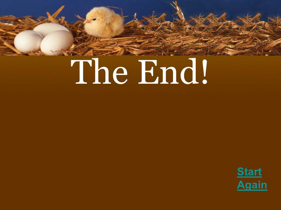 The End! Start Again