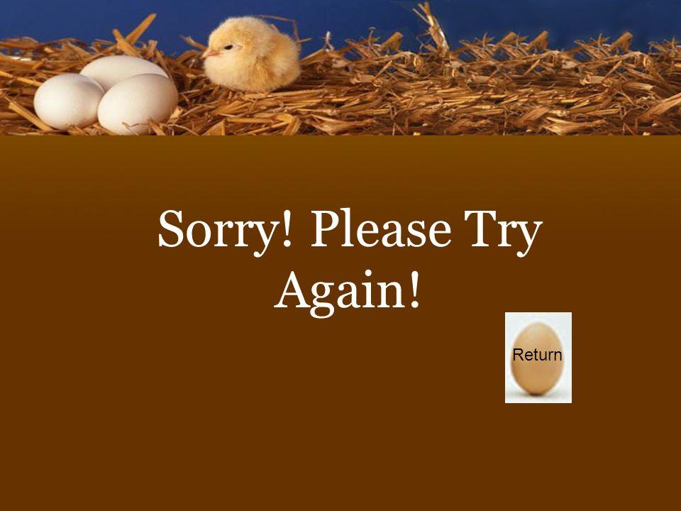 Sorry! Please Try Again! Return