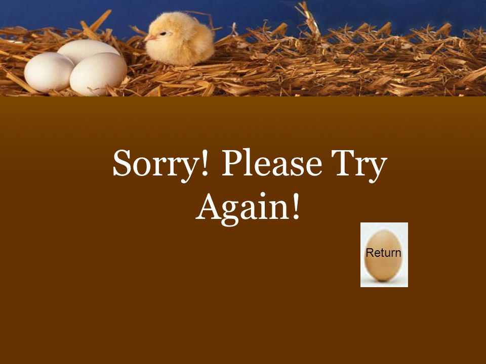 Sorry! Please Try Again! Return