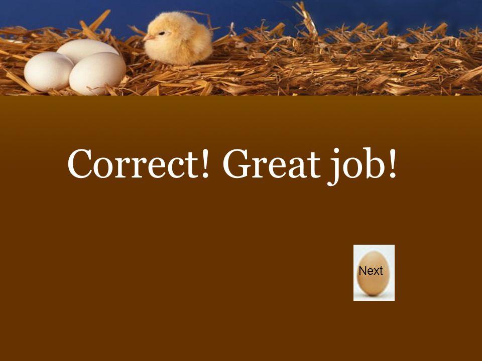 Correct! Great job! Next