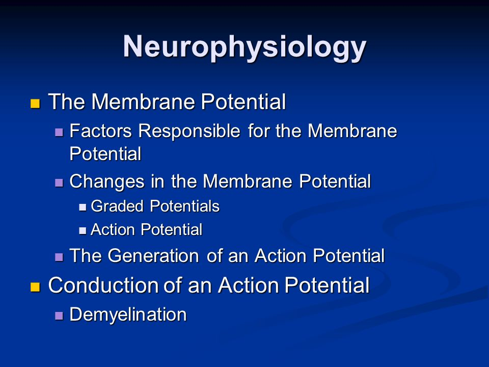 Neurophysiology The Membrane Potential