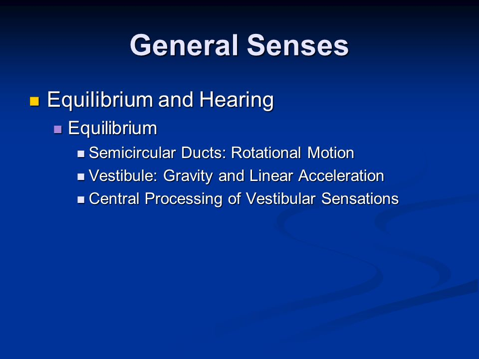 General Senses Equilibrium and Hearing Equilibrium