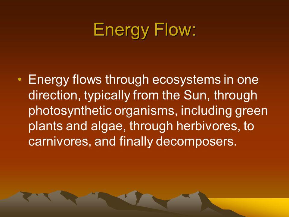 Energy Flow: