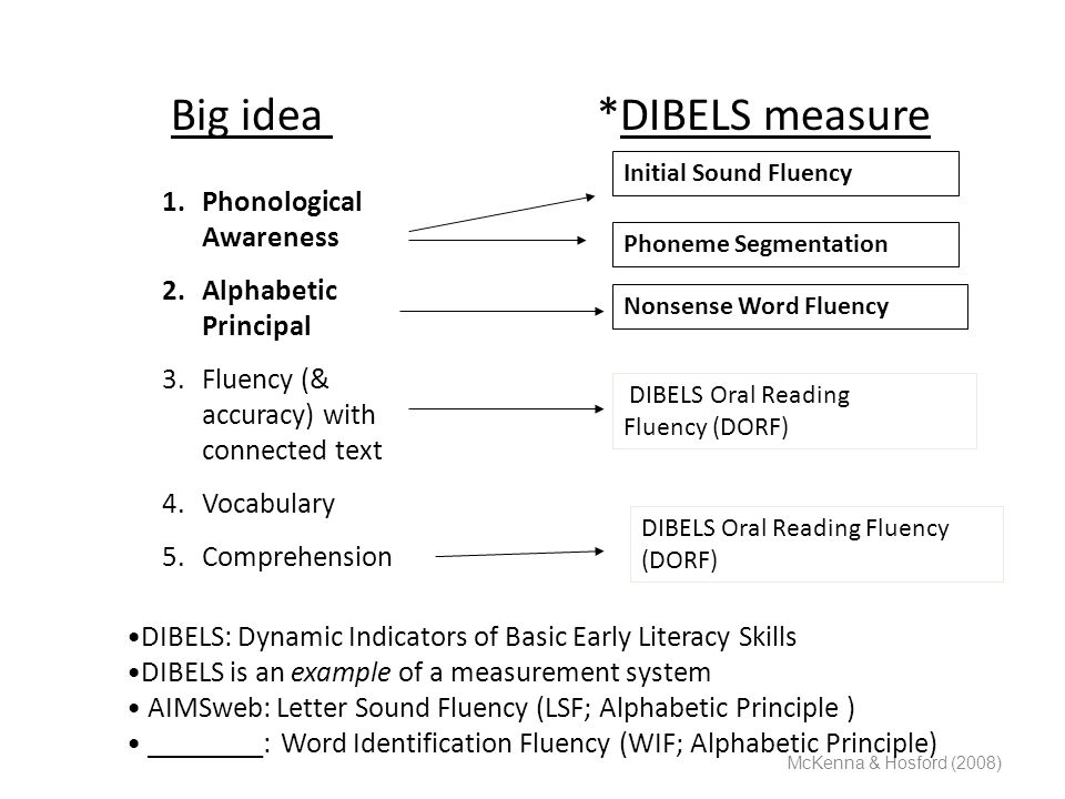 Big idea *DIBELS measure