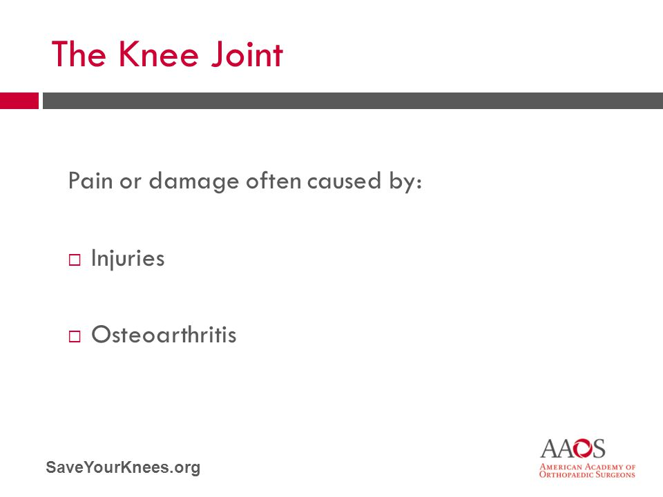 The Knee Joint Pain or damage often caused by: Injuries Osteoarthritis
