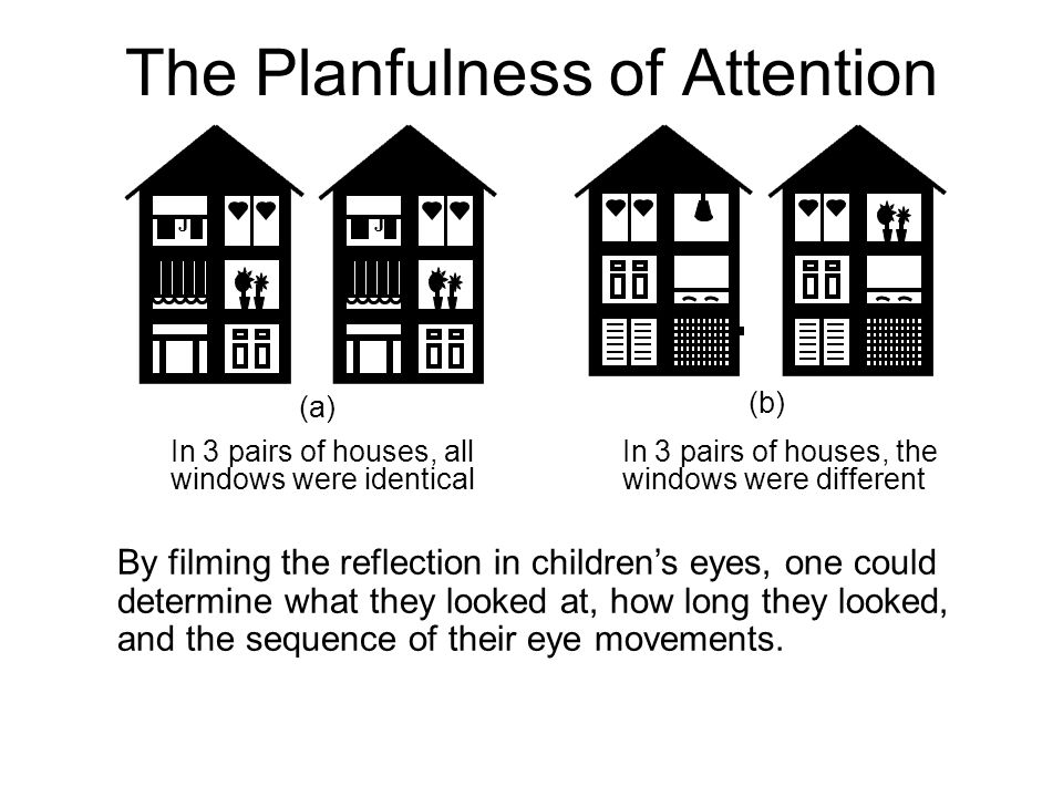 The Planfulness of Attention